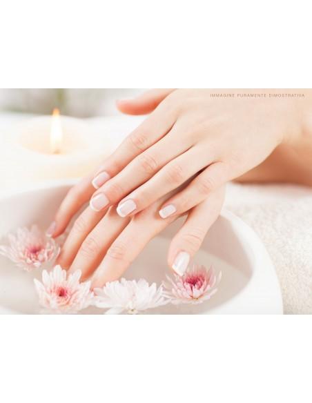 apparecchiatura uso professionale per unghie,  SCALDAPARAFFINA Professionale 3L